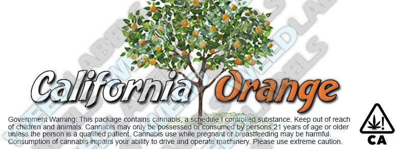 CAwater CALIFORNIA ORANGE