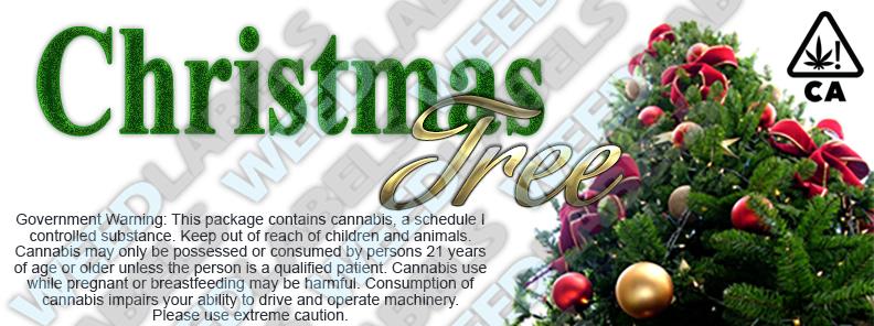 CAwater CHRISTMAS TREE