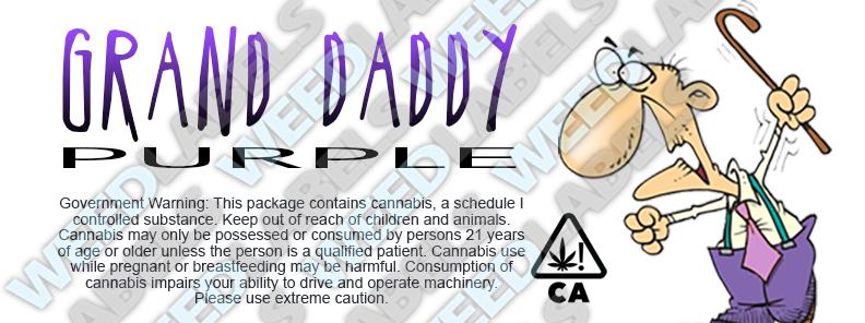 CAwater GRAND DADDY PURPLE