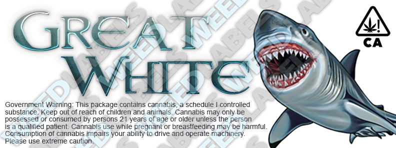 CAwater GREAT WHITE