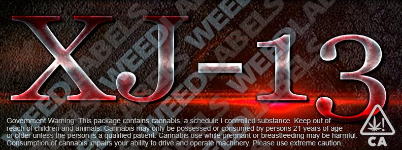 CAwater - XJ-13
