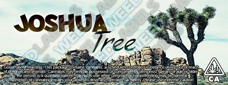 CAwater JOSHUA TREE